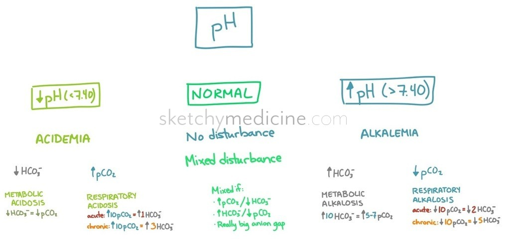 acid/base (alkalosis vs acidosis, metabolic vs respiratory, Skeleton
